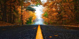 Autumn Car Accident Prevention